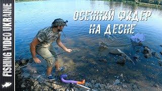 НА ФИДЕР МОЖНО ПОЙМАТЬ ЧТО УГОДНО | РЫБАЛКА НА ДЕСНЕ | FishingVideoUkraine