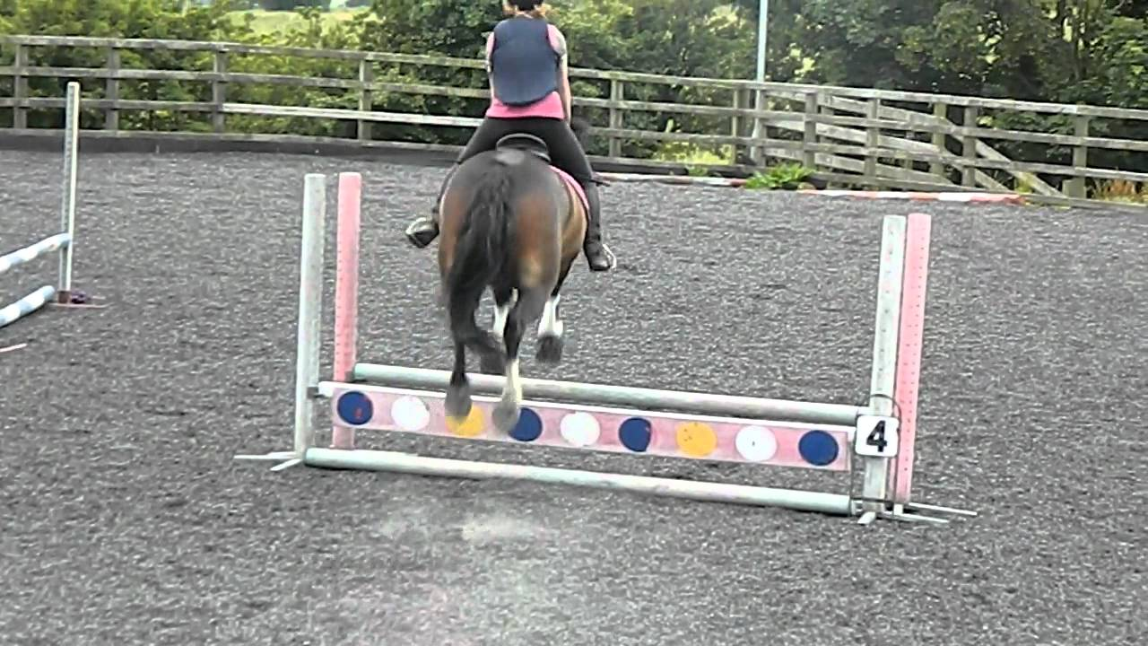 60cm Showjumping Training Finals