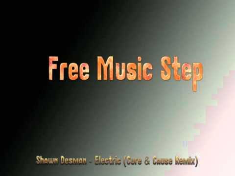 shawn desman electric cure cause remix