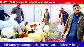 Start Goat Farm Daska Sialkot — Sciencebg