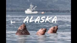 Hacia rutas salvajes: Alaska