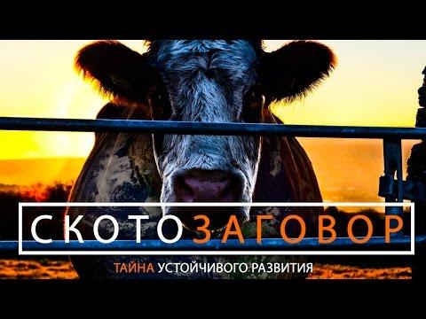 Документальный фильм Скотозаговор + на русском, русская озвучка, русский перевод.