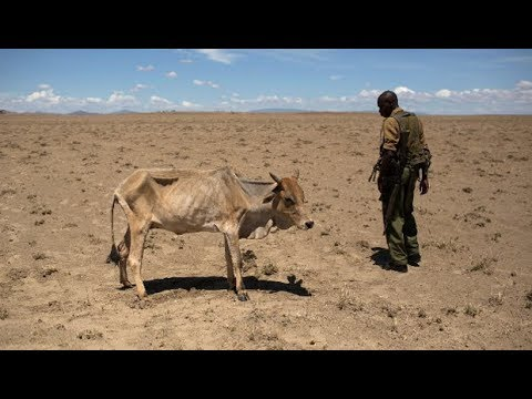 Will The Catastrophic Drought In Kenya Affect Its Presidential Election?