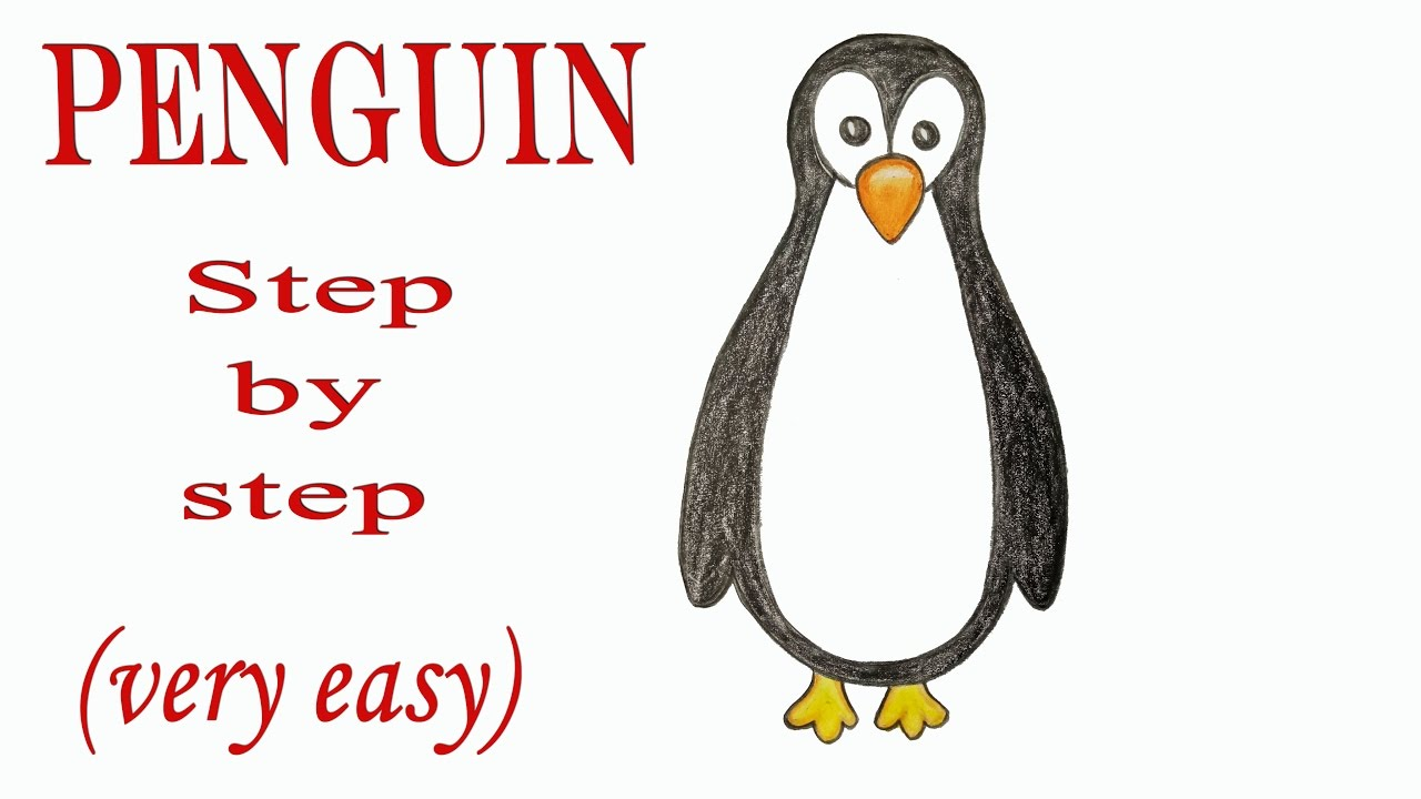 how to draw a penguin step by step very easy