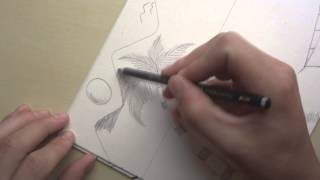 Desenhando Paisagem Speed - Drawing