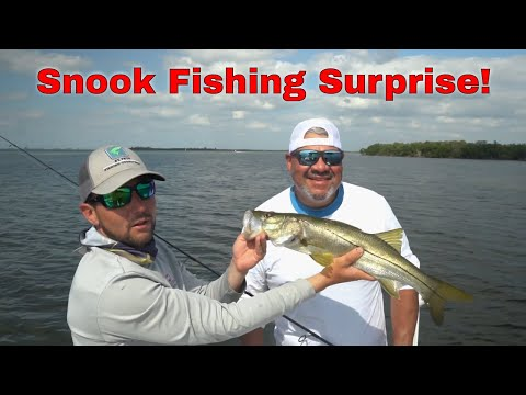 Pier Fisherman Catches FREE FISHING TRIP With Tampa Bay Guide!!Pt.2
