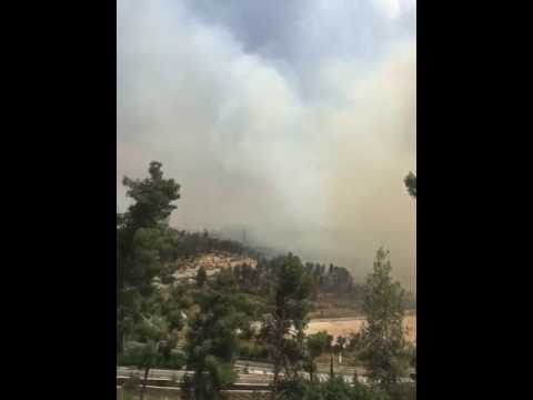 Ramot Jerusalem Forest Fire 2 (Giti Bir via Media Resource G