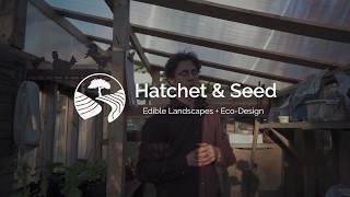 DIY Backyard Greenhouse Options