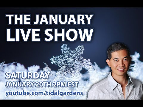 Tidal Gardens January 2018 Live Show