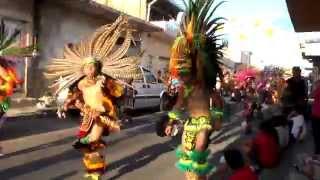 Peregrinaciones de las Fiestas de San Francisco de Asís en Tala Jalisco