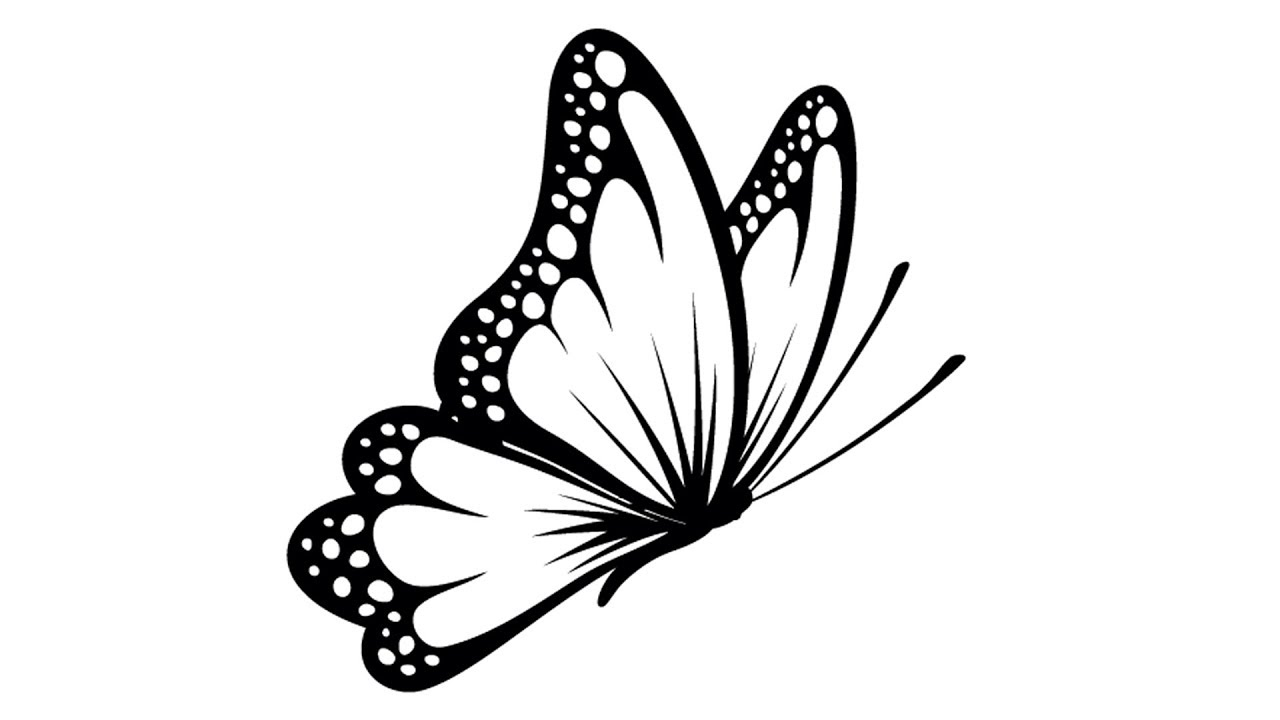 Butterfly Side Angle Art - YouTube