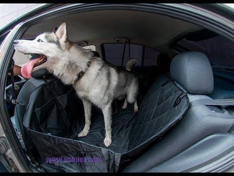 Автогомак для перевозки собак Voopet. Защити салон