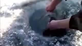 приколы на рыбалке смотреть бесплатные видео приколы онлайн