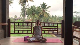 Intuitive Yin Yoga for Lung with Ariel