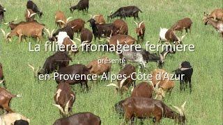 La filière fromagère fermière en Provence-Alpes-Côte d'Azur