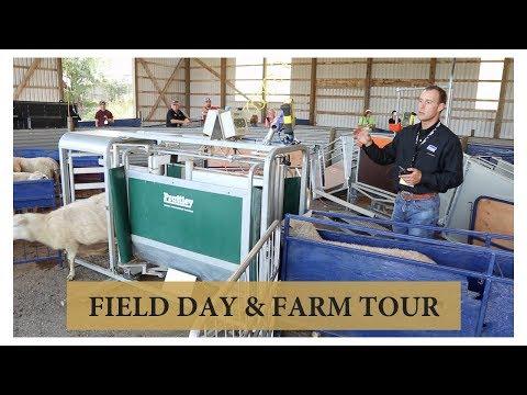 Sheep Equipment Expo & Farm Tour (I LOVE THIS FARM!): Vlog 97