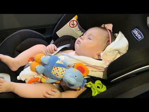 Seat Up - A Cadeirinhas Das Crianças.