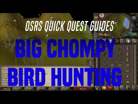 Quick Quest Guides - Big Chompy Bird Hunting 4:09