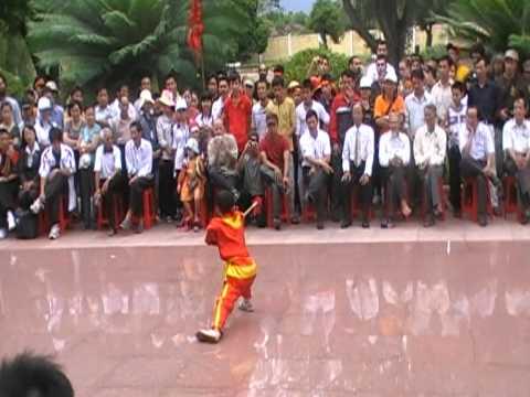 Võ cổ truyền Việt Nam  --  Võ Bình Định