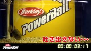 Berkley Powerbait 「バイト時間は18倍!」