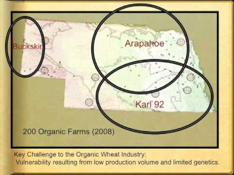 Organic Farming Systems Research at the University of Nebraska Webinar