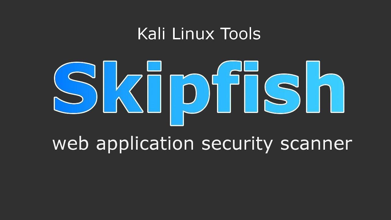 Skipfish Web Application Security Scanner Kali Linux tools [Hindi]