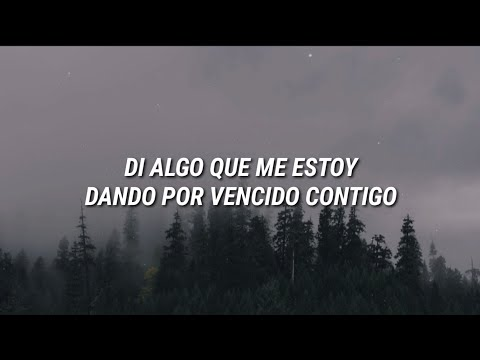 Shawn Mendes - Say Something  Español