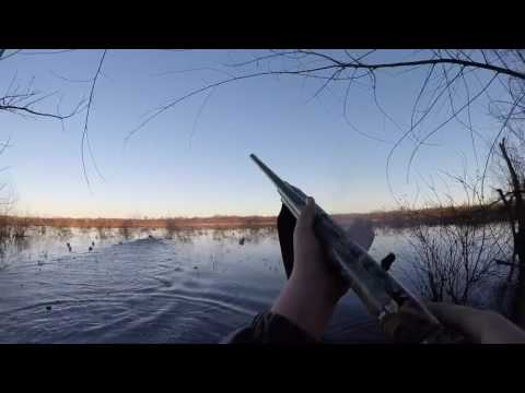Bow Hunting Deer: Hunting the Rut (#54) @GrowingDeer.tv from YouTube · Duration:  6 minutes 42 seconds