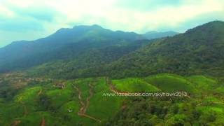 Aerial view of Munnar tea plantations in between the forests of Kerala, India