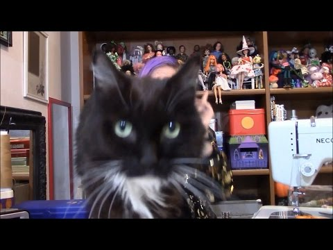 My Twenty-eighth Doll Video--Meh...but I still have dolls and cats