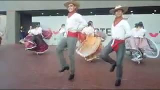 """La iguana - el Pitayero. Bailes folk. de Colima, Mexico. Gpo Folk """"Fandangos De México """""""