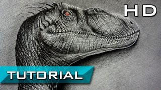 How to Draw a Velociraptor from Jurassic World with Pencil Step by Step  - How to draw Dinosaurs