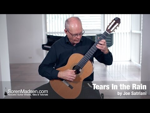 Tears in the Rain (Joe Satriani) - Danish Guitar Performance - Soren Madsen