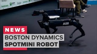 Boston Dynamics demonstrates its SpotMini robot dog (CNET News)