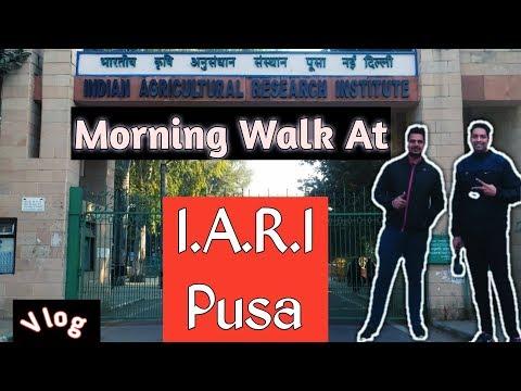 Morning Walk At IARI Pusa