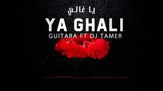 GUITARA - YA GHALI (DEEJAY TAMER REMIX) جيتارا - يا غالي دي جي تامر ريميكس