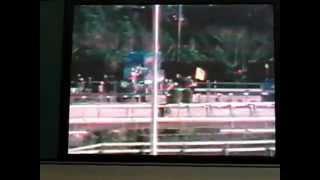 ①原良馬さんの「思い出の有馬記念を振り返る」 1977年 有馬記念 テンポイント