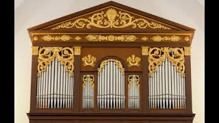 "XAVER VARNUS IN CONCERT: VIVALDI'S ""STORM"" ON THE DEBRECEN GREAT CHURCH ORGAN"