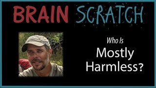 BrainScratch: Who is Mostly Harmless?