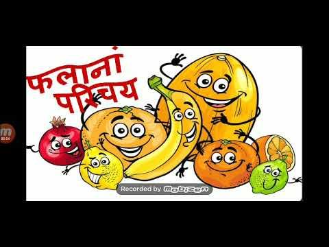 संस्कृत में फलों के नाम//fruits Name In Sanskrit