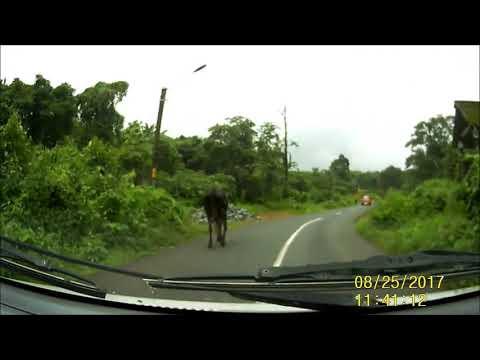 Roads in Goa: Sanquelim - Amona - Marcel - Old Goa - Panjim