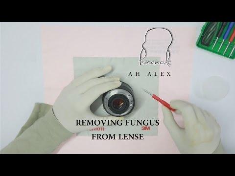 Removing Fungus from Lense (Nikkor 50mm 1.8D) (Bengali language)