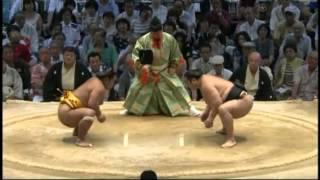 アミちゃん、おでこ張られて激おこ syohozan aminishiki sumo.