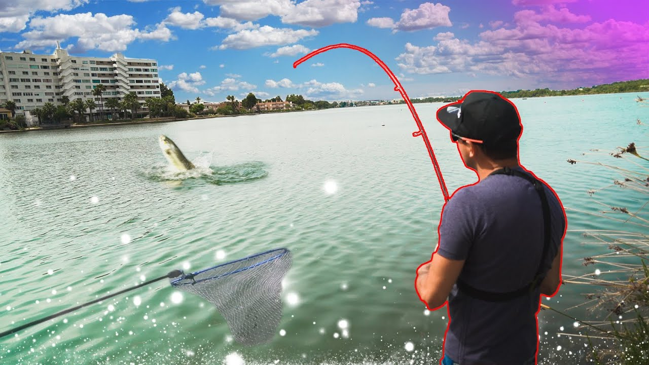 No CABÍA en el SALABRE  *ATAQUE a pez VISTO* [Street Fishing] | Lured Vlog 186