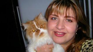 видео Отек легких у кота: симптомы и лечение