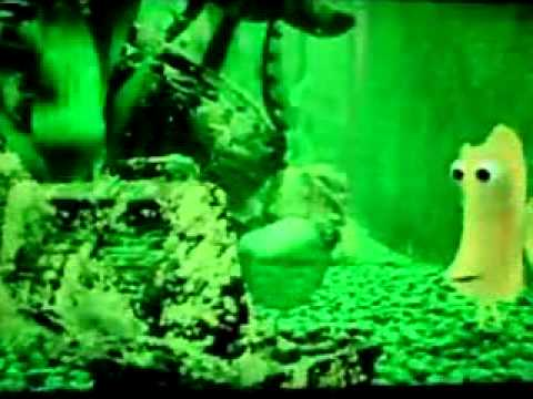 Finding nemo dirty mpg youtube for Dirty fish tank