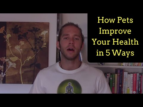 How Pets Improve Your Health in 5 Ways (Cats & Dogs)