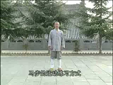 Shaolin Monk Demonstrates Kung Fu Horse Stance (Ma Bu)