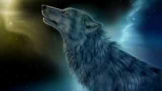 Одинокая  Волчица...исп. Александр Добронравов