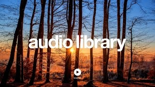 Acoustic Folk Instrumental — Hyde - Free Instrumentals [Vlog No Copyright Music]
